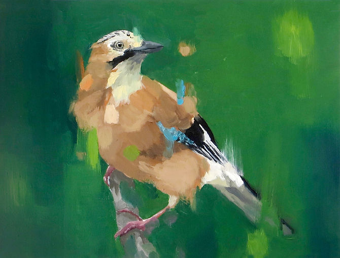 avocet suzanne birch painting visual art