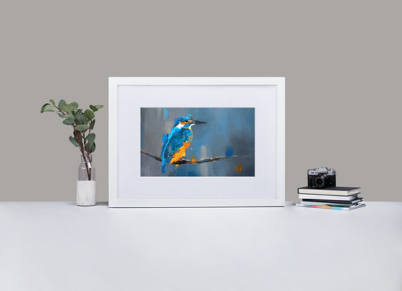 Kingfisher Framed Print with Mount
