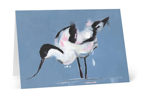 Avocet Cards (8 pcs)