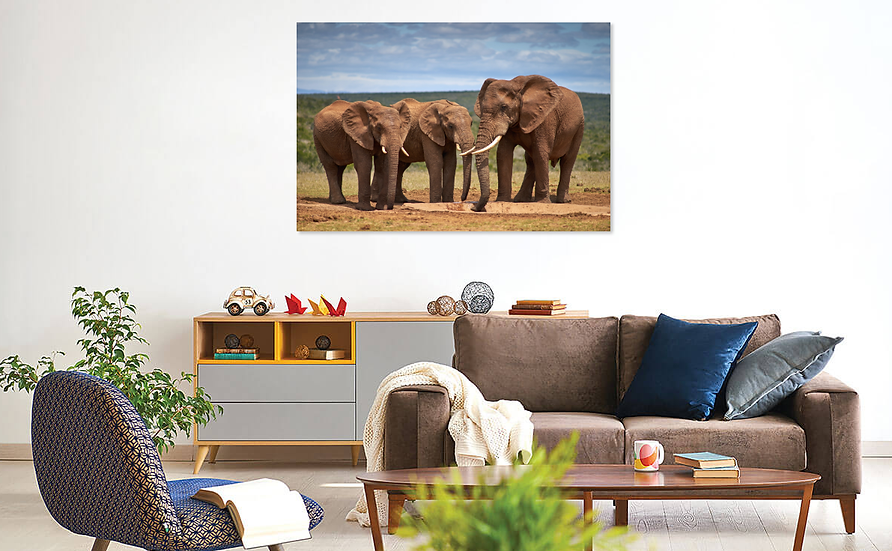 """Just the three of Us"" Elephant Print"
