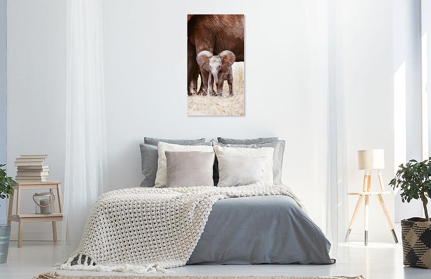 """""""Baby"""" - Elephant Print"""