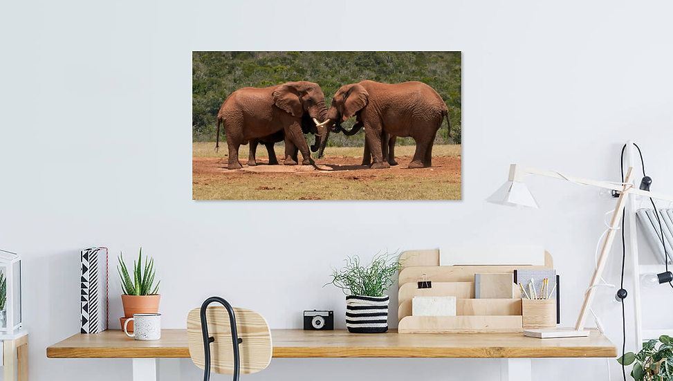 """Me and You Forever"" - Elephant Print"