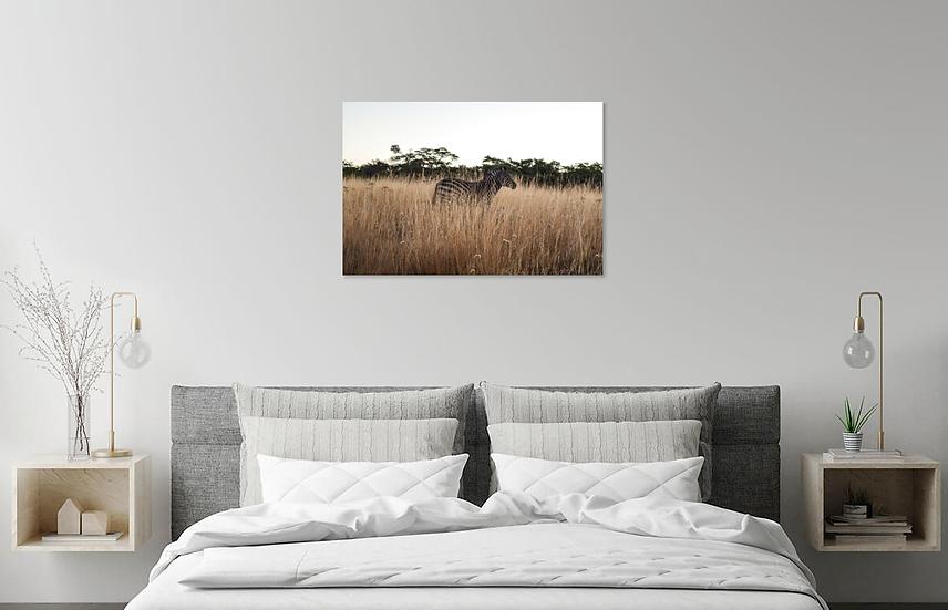 """Wonderlust"" - Zebra Print"