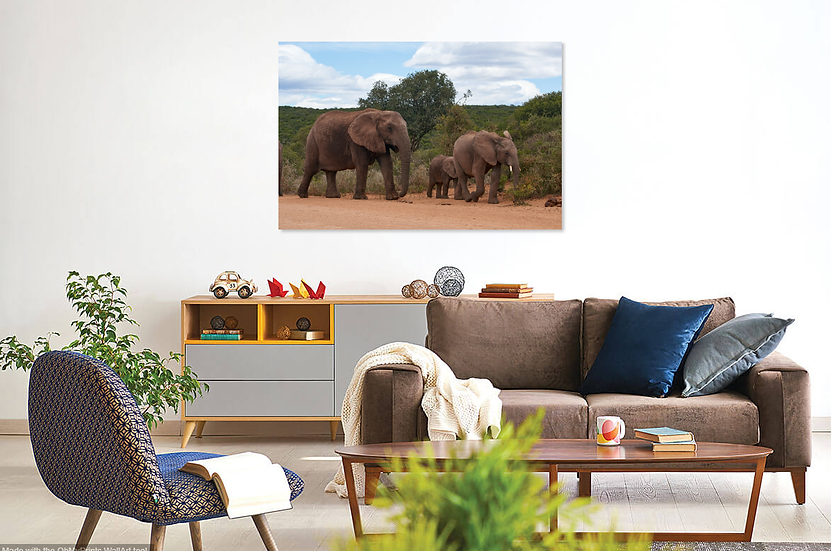 """Always Together"" - Elephant Print"