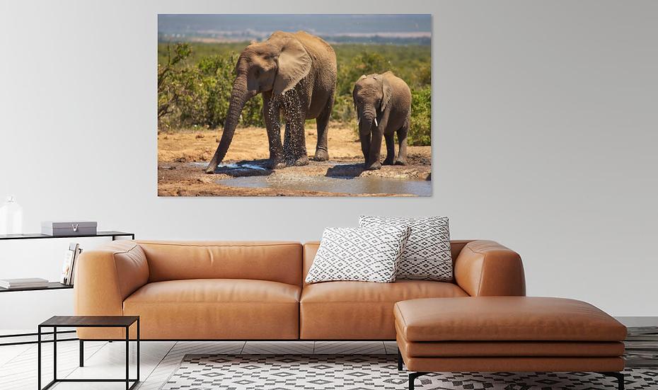 """""""Forever Together"""" - Elephant Print"""