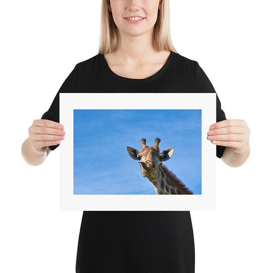 Cheeky Giraffe Print