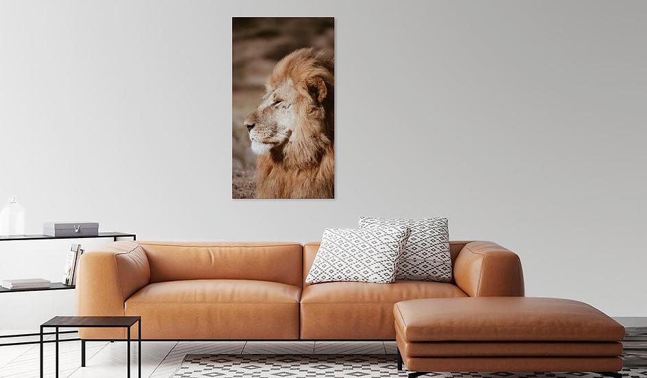 """""""King"""" - Lion Print"""