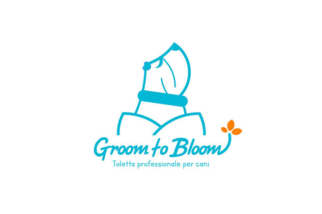 Groom to Bloom