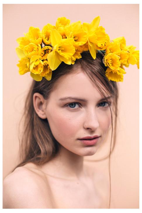 The_Daffodil_PopBee-0832_2000.jpg