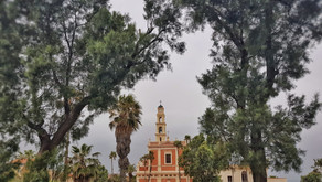 Why I love the vertical panorama feature in my smartphone's camera