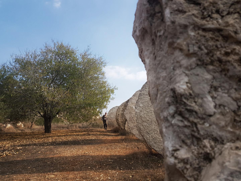 Israel-Museum-Art-Garden-4.jpeg