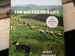 The Shepherd's Words