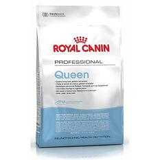 royal-canin-queen.jpg