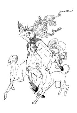 Centaur (Sketch)