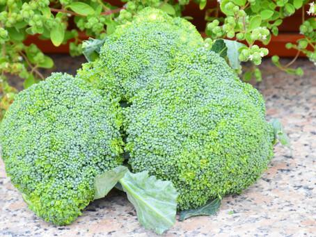 Kdo vám předepíše brokolici místo léků?