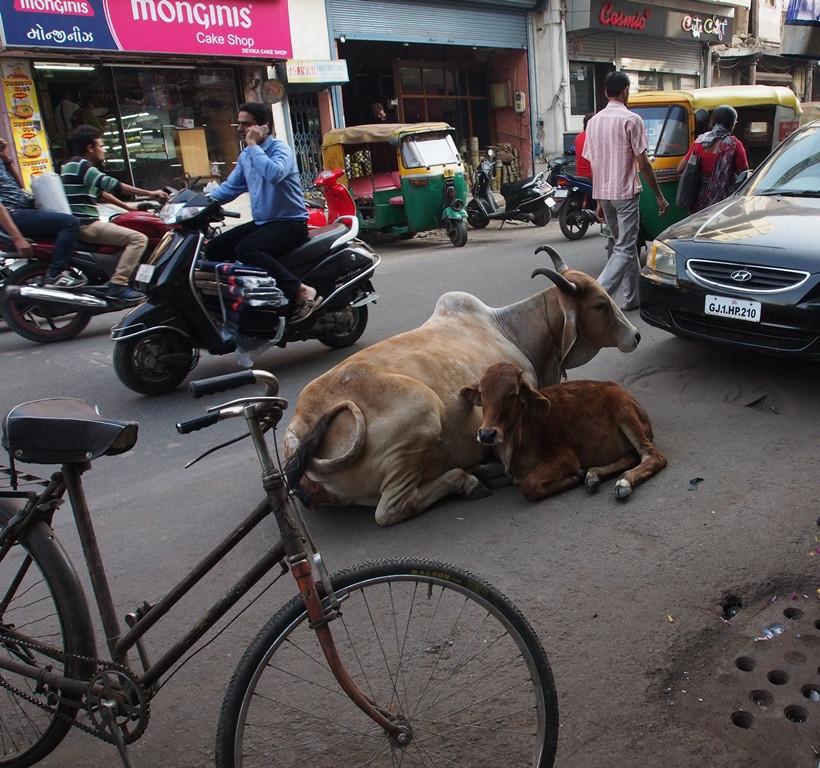 Liikennettä Ahmedabadissa