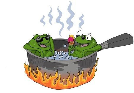 9/1/20 - Bull Frogs in a jacuzzi (or a pot)?