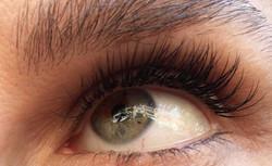 pretty eyes, pretty lashes 😍_•_•_#novalash #borboleta #borboletabeauty #lashes #lashed #mua #love #