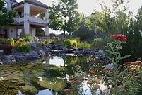 Landscaping plantings and gardens colorado