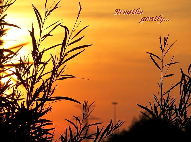 Breathe gently-1.JPG