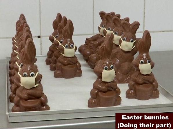 Easter bunnies-1.jpg