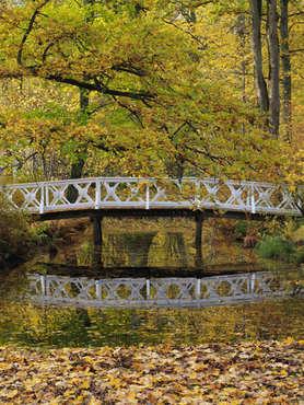 mapleleaf bridge