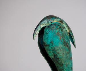 Walking bird detail