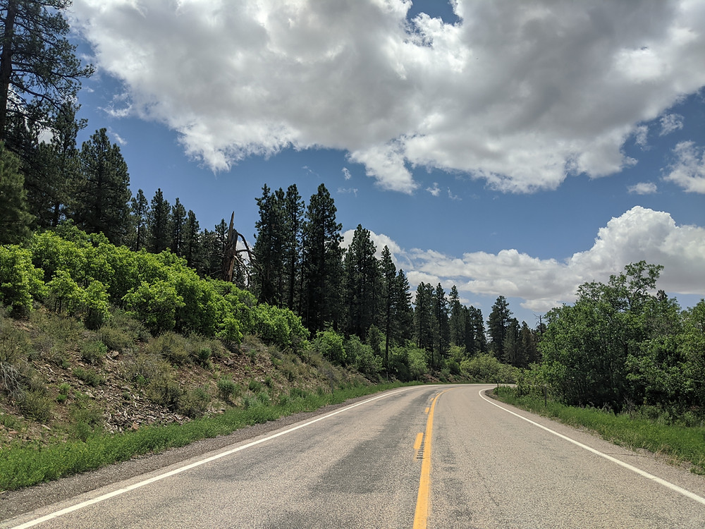 view of the forest from the center of a highway with blue skies and a mix of clouds