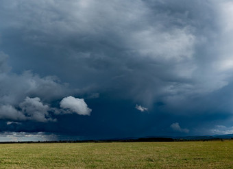 Wind & Rain & Hail...Oh My!