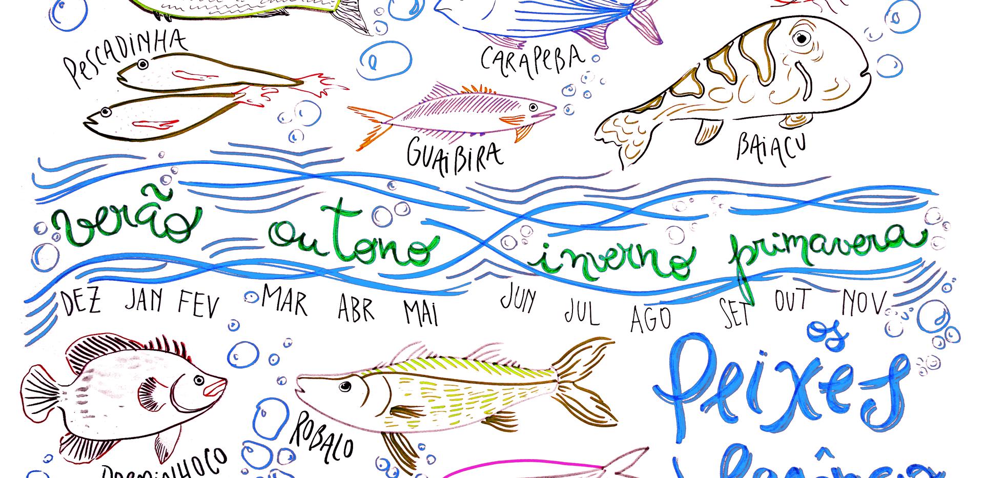 Cartografia da Pesca - MARAMAR