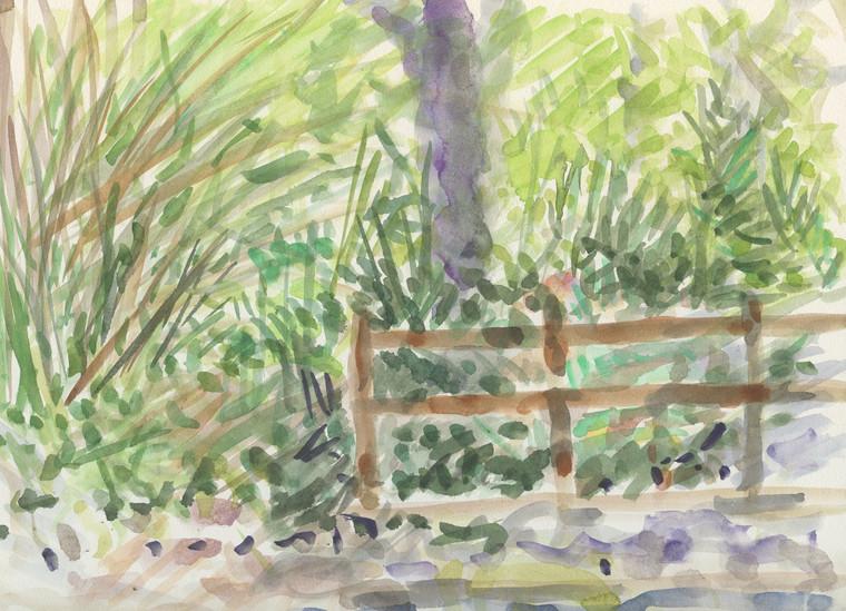 """Fence UCLA Botanical Garden Watercolor on Board 2014"