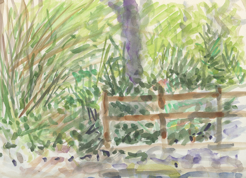 """Fence UCLA Botanical Garden Watercolor on Board 2014"