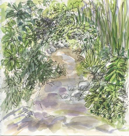 """Pathway UCLA Botanical Garden""  Watercolor on Paper 2014"