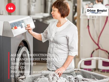 Agents de Production F/H dans une blanchisserie industrielle Site - SAINT VULBAS (01)
