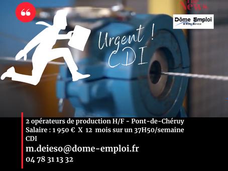 2 opérateurs de production H/F38230 Pont-de-Chéruy CDI