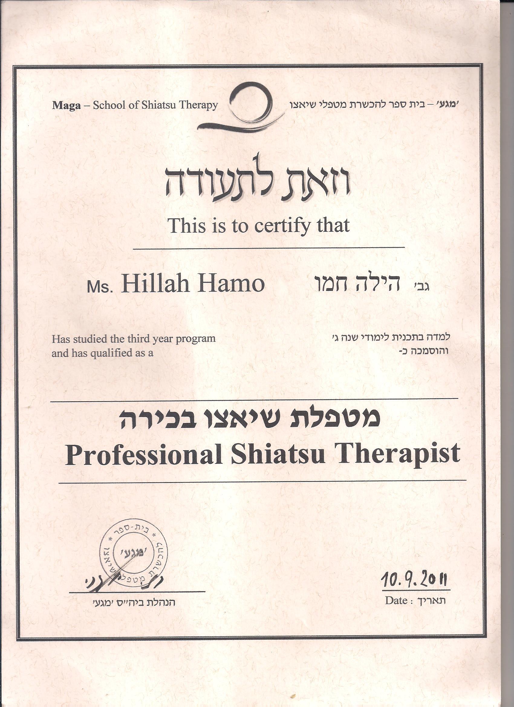 Proffesional Shiatsu Diploma