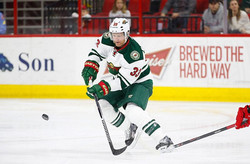 Jordan Leopold Minnesota Wild Hockey