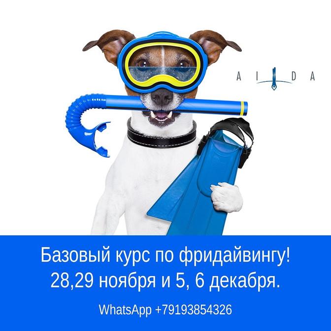 Научиться фридайвингу в Екатеринбурге можно в конце ноября