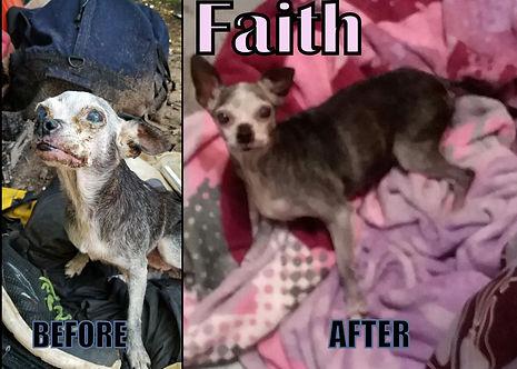 Faith2jpg.jpg