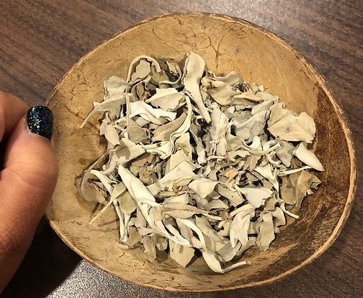 Sacred White Sage (Salvia Apiana)