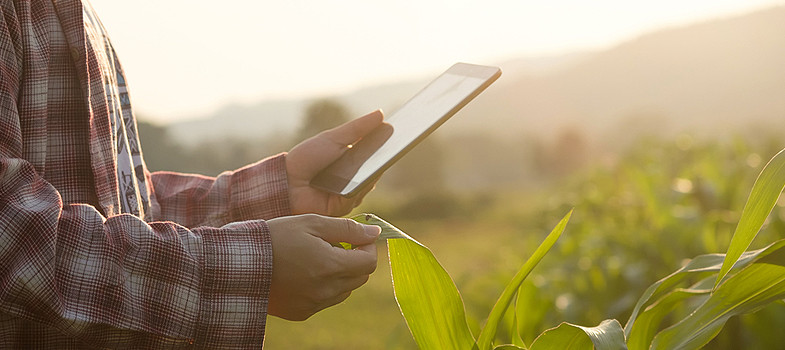 inteligencia artificial e agronegocio