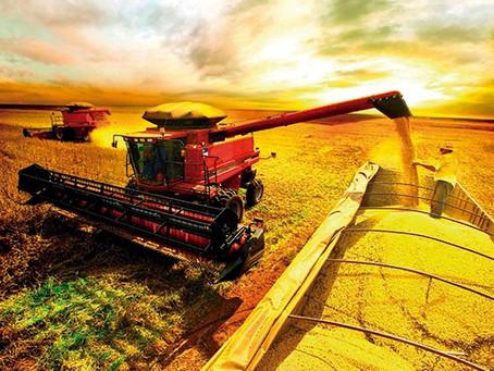 Positivo o crescimento do setor de agro para margens de soja e milho