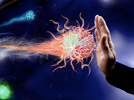 How To Optimize Your Immune System  – Your 2021 Guide