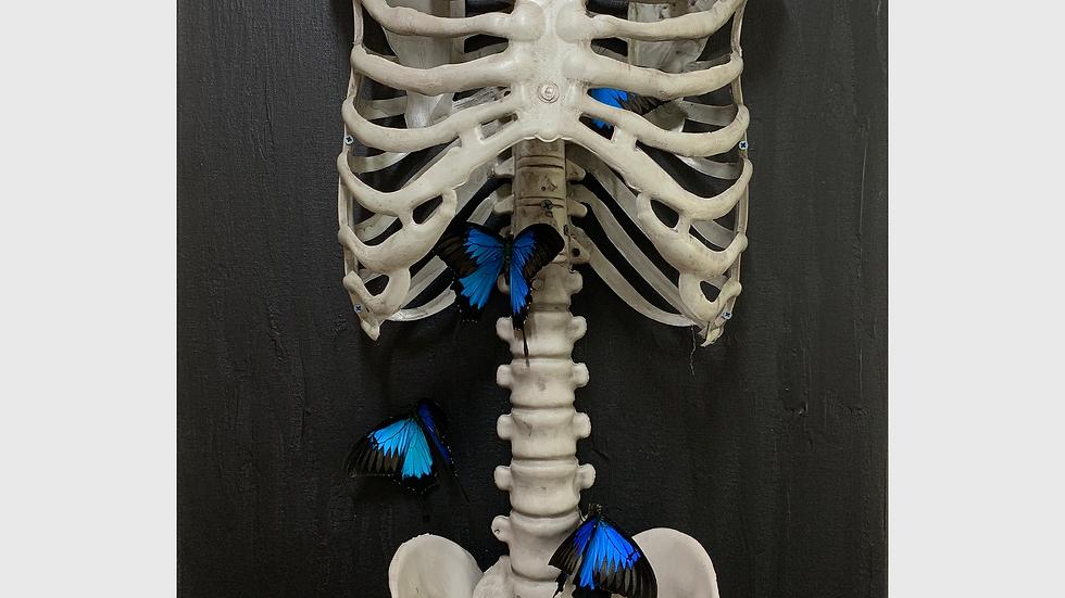 Реинкарнация. Бабочки в животе