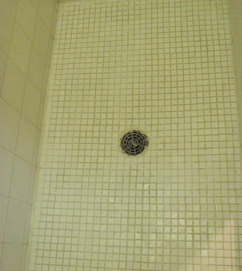 Regular Tile after