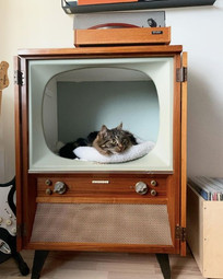 Adorable cat bed from an old tv by @70luvunkodissa on instagram