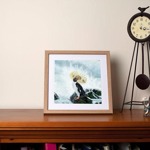 Fiordland Penguin  - limited edition print unframed