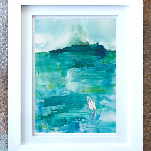 Pied Shag - limited edition prints on watercolour paper, unframed