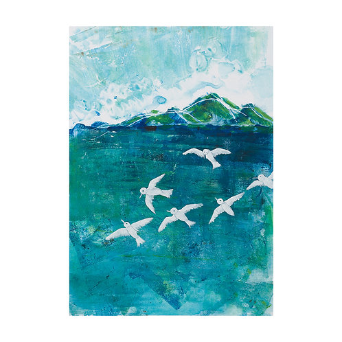 Terns - limited edition giclee prints on watercolour paper