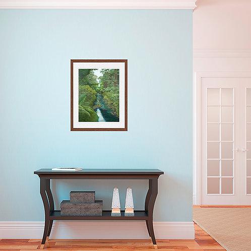 Bush scene - unframed giclee prints